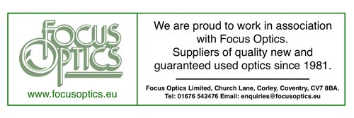 Focus Optics Link
